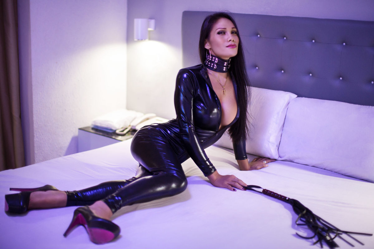 Wondering about Ladyboy Mistress?